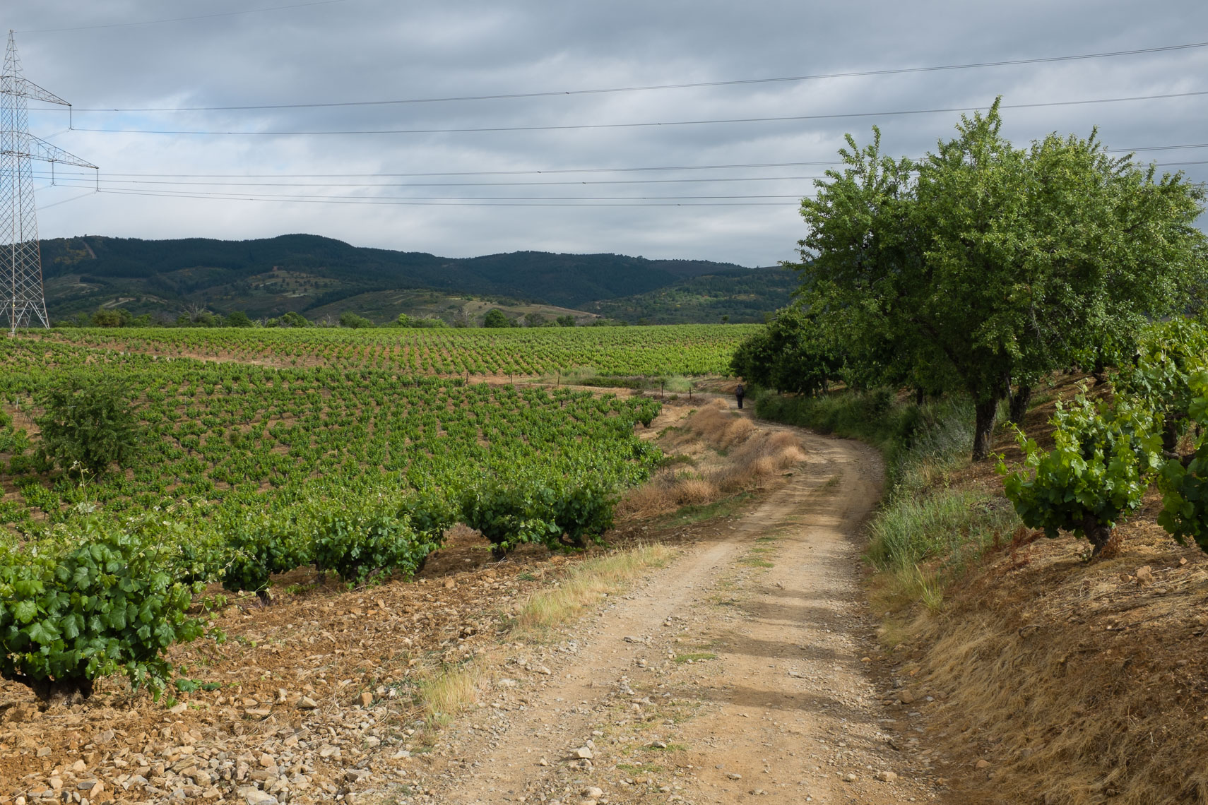 2014-0506-MayJune-TRAVEL-Camino-1242